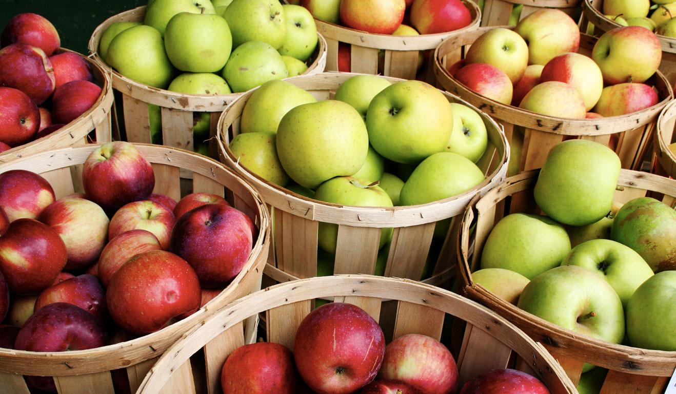 Great Health Benefits of Apples
