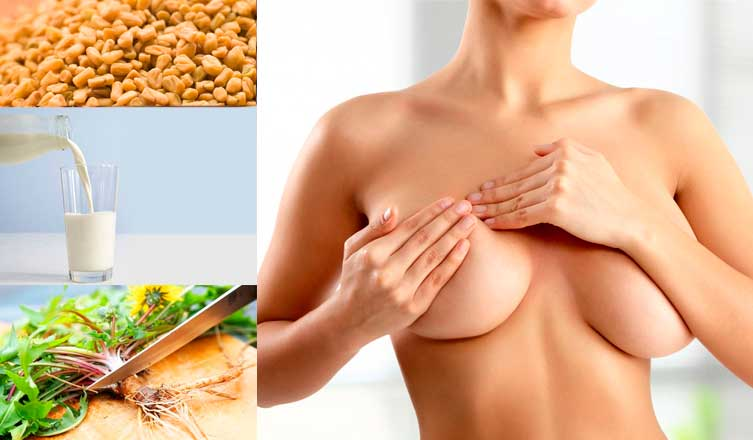 Top 24 Home Remedies for Breast Enlargement