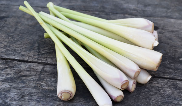 Lemongrass helps with aches - Health Benefits of Lemongrass