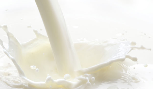 Milk - Top Superfoods for Lactating Women