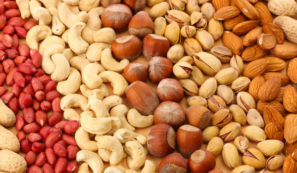 Nut - How to Prevent Alzheimer's Disease
