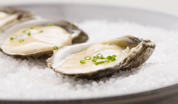 Oyster - How To Lower Your Cortisol