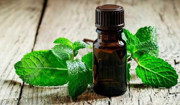 Peppermint Oil - 20 Impressive Home Remedies for Dry Socket