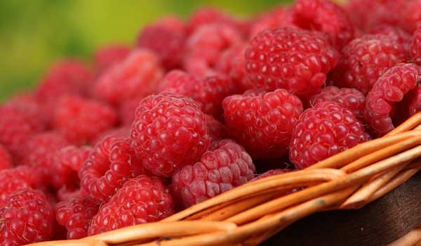 Raspberry - Home Remedies for Scarlet Fever