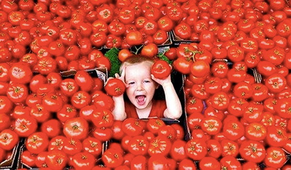 Tomatoes good for digestive health - Health Benefits of Tomatoes