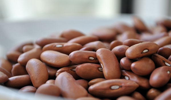 Beans - Top Superfoods for Fatigue