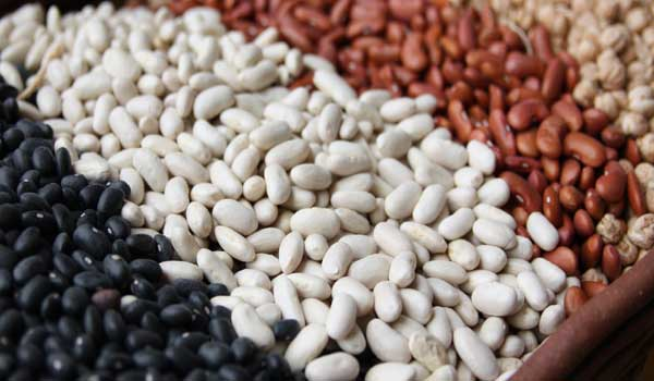 Boost Energy - Health Benefits of Beans