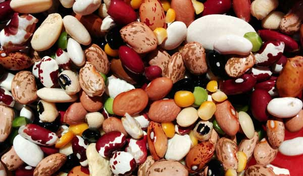 Antioxidants - Health Benefits of Beans