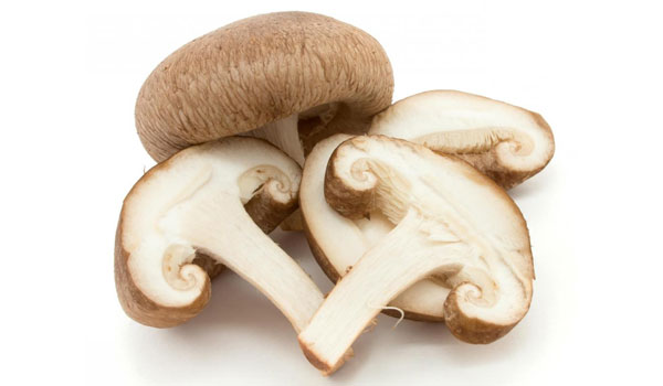 Mushroom - Home Remedies to Boost Immunity