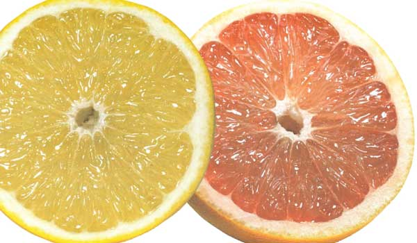 Digestion - Health Benefits of Pomelo