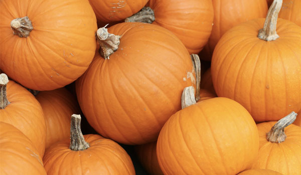 Pumpkin - Home Remedies for Dementia
