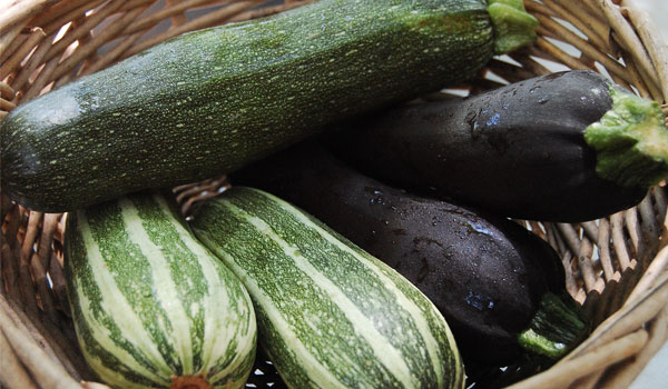 Squash has Antiseptic and Antifungal Quality - Health Benefits of Squash