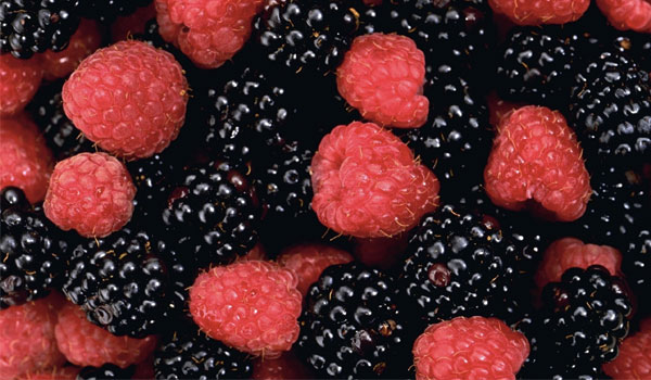 Berries - Top Superfoods for A Healthy Kidney