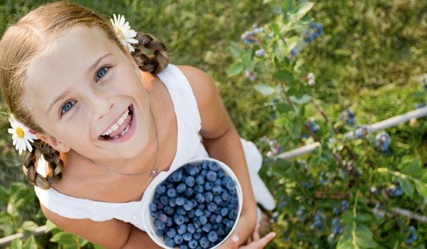 Blueberries - Top Superfoods for Growing Children