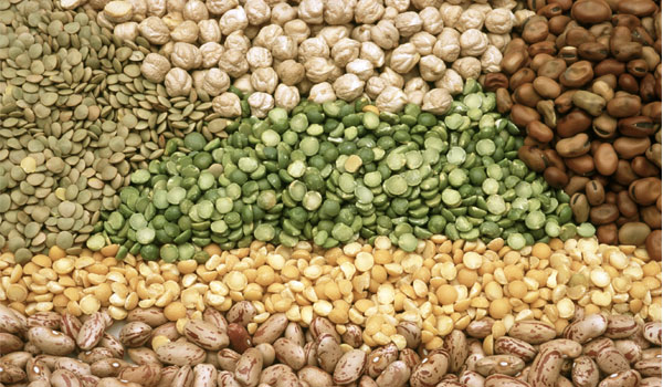 Legumes - Top Superfoods for Muscle Building