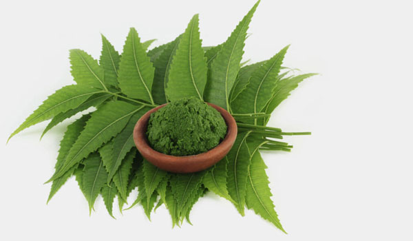 Neem - Home Remedies for Skin Abrasions