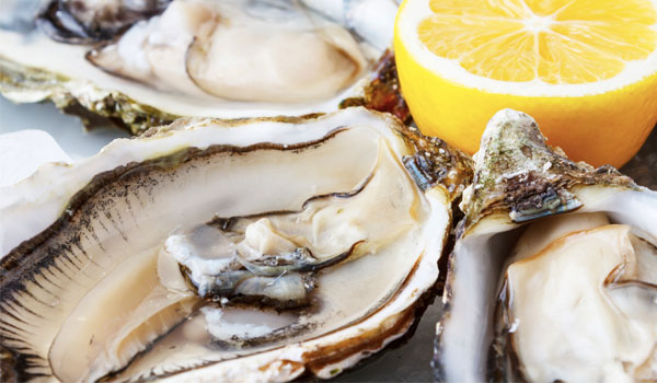 Oysters - Top Suppperfoods for Fertility