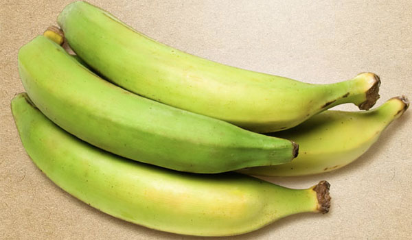 Plantain - Home Remedies for Skin Abrasions