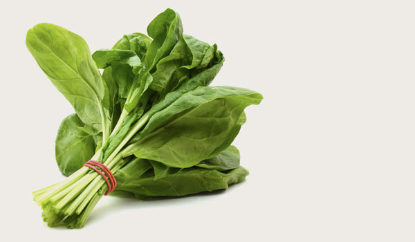 Spinach - Top Superfoods for Women