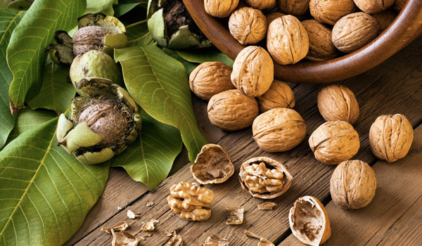 Walnuts - How to Get Rid of Dark Skin on Neck