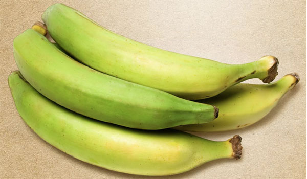 Plantain - Home Remedies for Yellow Jacket Stings