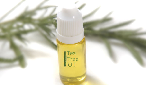 Tea Tree Oil - Home Remedies for Scalp Acne
