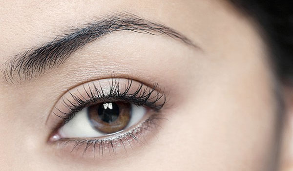 Eyebrows - How to Use Aloe Vera Plant