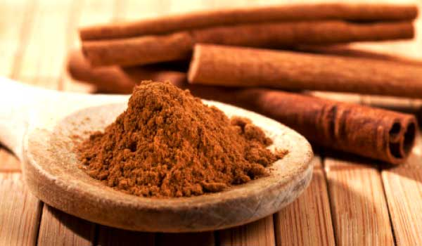 Cinnamon - How to Treat Malaria Naturally