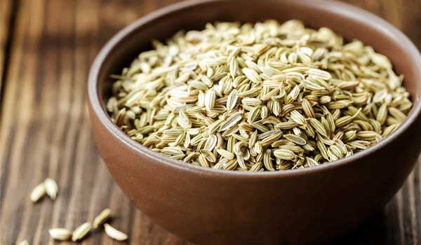 Fennel-Seeds - Home Remedies for Lactose Intolerance