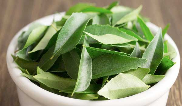 Curry-leaves -How to Grow Thicker Eyebrows