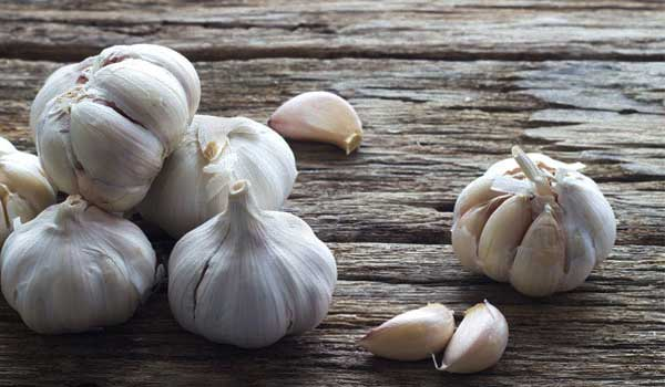 Garlic - How to Increase Appetite