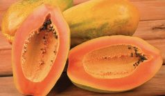 Papaya - How to get rid of sunspots