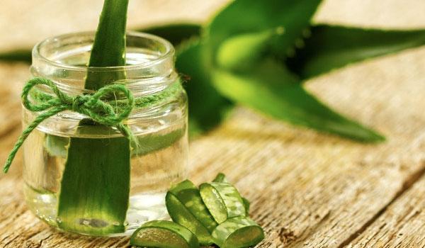 Aloe-Vera - Home Remedies for Peeling Skin