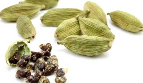 Cassia Seeds - Home Remedies for Astigmatism
